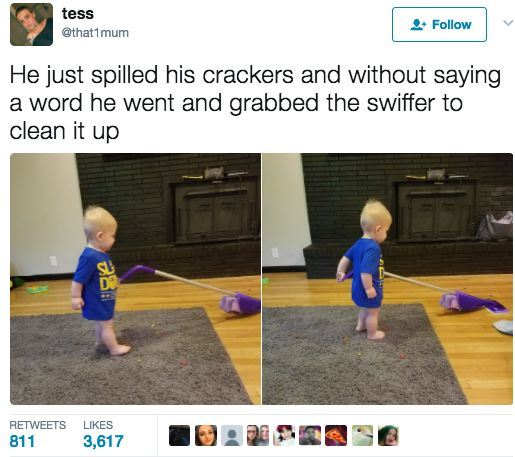 I appreciate he's trained to clean up if he makes a mess, but I want to know how he's gonna clean up crackers with a mop.