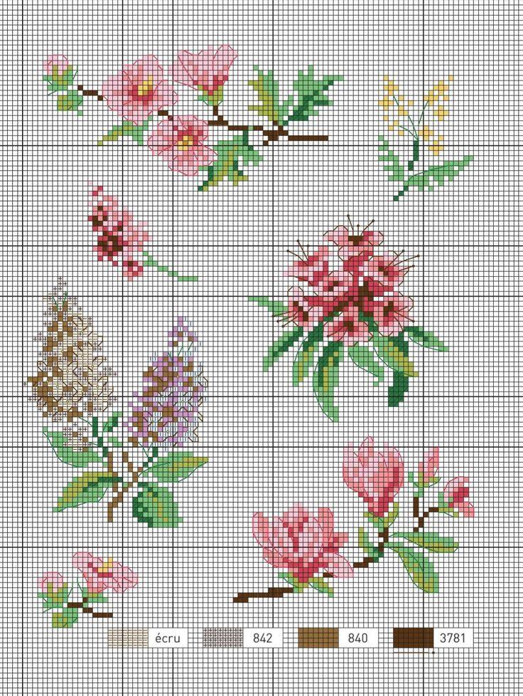 fleurs_plantes_aromatiques_76145 #ClippedOnIssuu