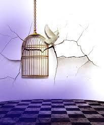 Vivere senza dover lavorare: cinque falsi miti sulla libertà finanziaria