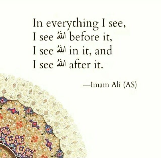"""In everything I see, I see Allah before it, I see Allah in it, and I see Allah after it."" -Imam Ali (AS)"