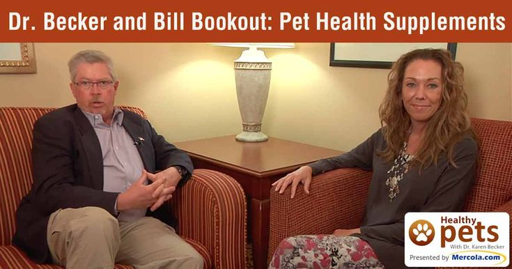 Confused about health supplements you should give to your pet? Learn what to look for to insure you're buying the highest quality pet supplements available. http://healthypets.mercola.com/sites/healthypets/archive/2016/04/03/pet-health-supplements.aspx