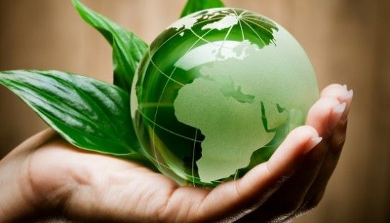"""Dall'#Università del Kentucky arriva la sperimentazione di nuovo procedimento per produrre #biocarburante ultra """"pulito"""" dalla #biomassa #vegetale. Un doppio #vantaggio, #economico e in termini di #sostenibilità!"""