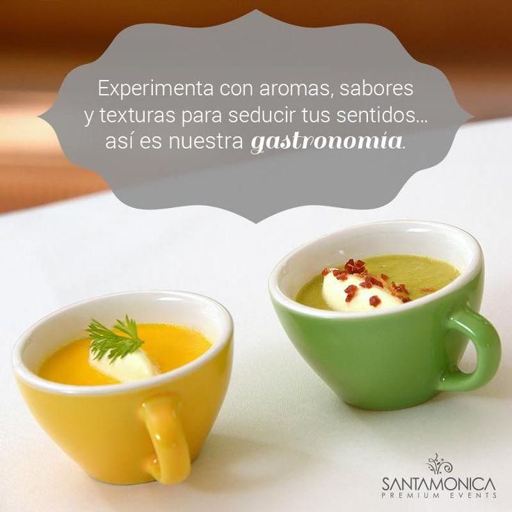 En SANTAMONICA encuentras gastronomía que cautiva.