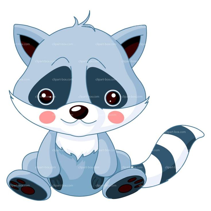 cartoon baby racoon - Norton Safe Search