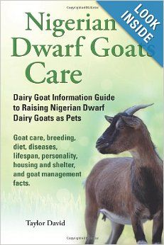 Nigerian Dwarf Goats Care: Dairy Goat Information Guide to Raising Nigerian Dwarf Dairy Goats as Pets. Goat care, breeding, diet, diseases, ...