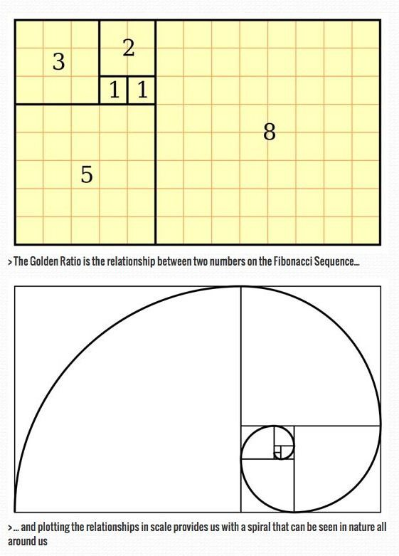 The Golden Ratio: a designer's guide.  The Golden Ratio is a beautifully simple piece of mathematical theory that can help make your designs feel well proportioned and pleasing on the eye. We explain how to use it. Mehr zur Mathematik und Lernen allgemein unter zentral-lernen.de – Ljudmila Schalm