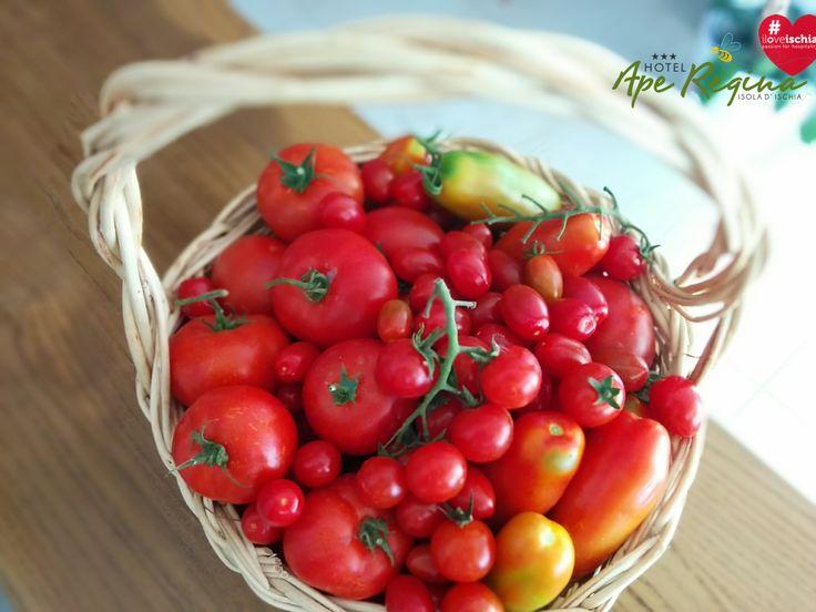 Frutti di una terra assolata e  generosa!   #pummarole #pomodori  di  #ischia   #campaniafelix   #iloveischia