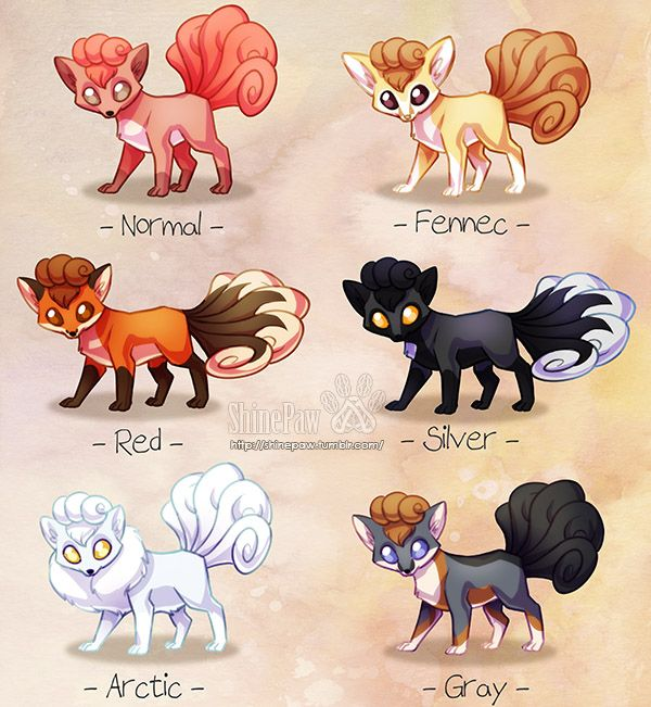 Did some pokemon variations, I saw a lot of these things lately and I wanted to give it a try :D I picked Vulpix, and some fox species to go with it.