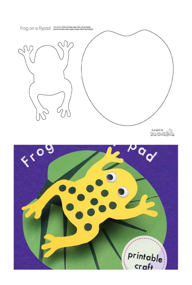 Frog and nenufar. Template