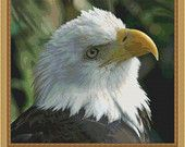 Çapraz Dikiş Desen Bald Eagle Güzel Xstitch Tasarım Anında İndir PDF - Modern Tasarım - Amerikan Kuş Sanat Çapraz Stit