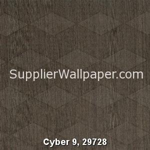 Cyber 9, 29728