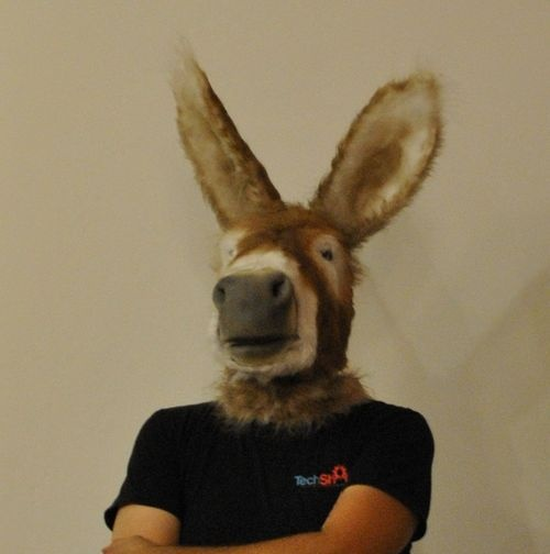 Donkey Mask with Working Mouth (face puppet) - this is a friggin sweet donkey mask.
