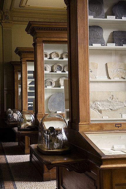 The oldest still working museum and my favourite place in Haarlem, the Teylers Museum, I like a good museum.