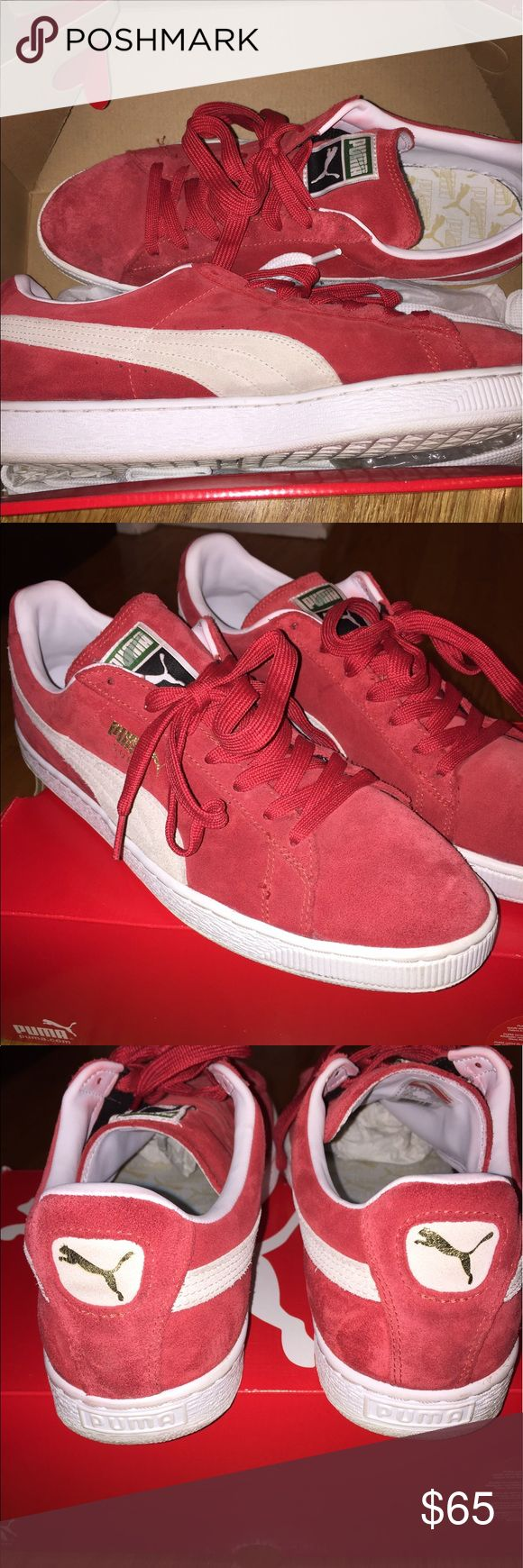 Suede classic + high risk red - white Classic Puma Shoes Sneakers