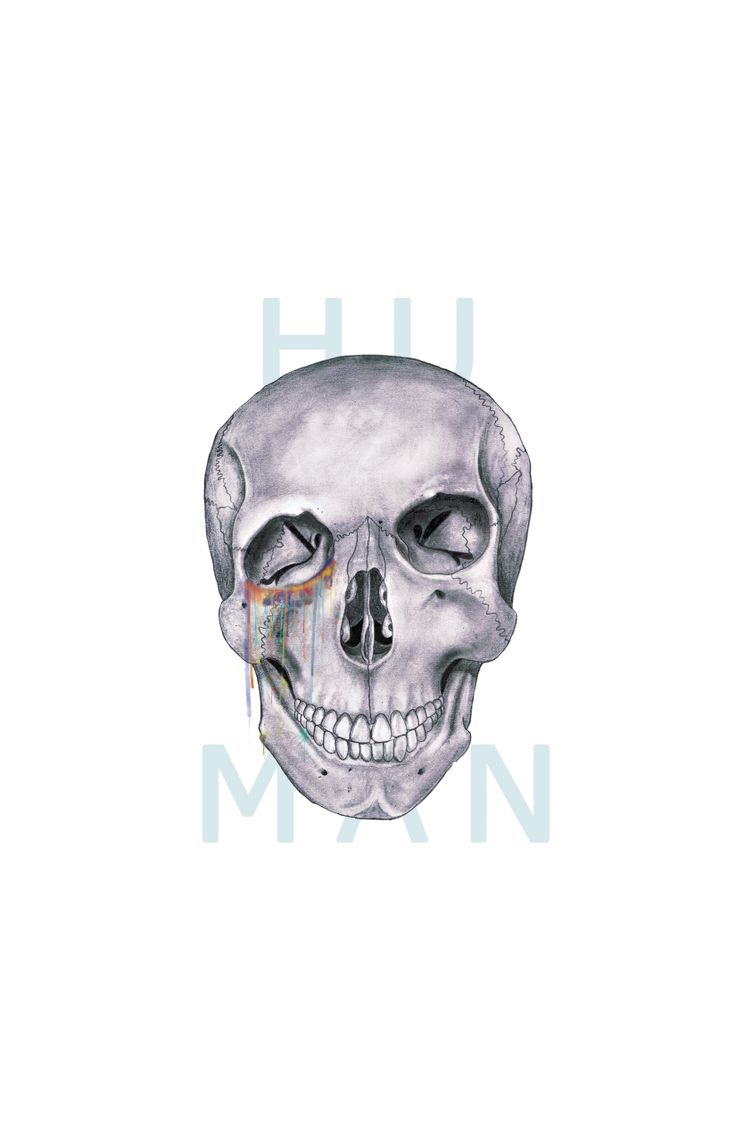 by  #humanskull #wearejusthumans #illustration #pencilillustration #watercolor #art