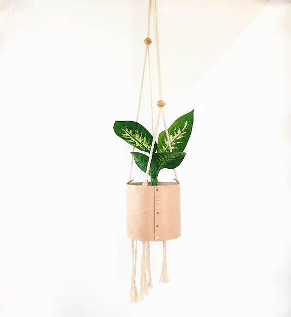 Leather And Rope Plant Hanger by Right Tribe