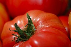 LF salsaFermented Food, Fair Food, Small Spaces Gardens, Stores Tomatoes, Food Science, Salsa Recipe, Room Temperature, Fresh Tomatoes, Food Recipe