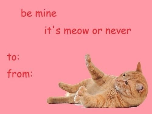 valentine's day cards funny mean girls - Google Search