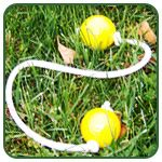 lots of great lawn game ideas! ladder golf, kubb, molkky, ect