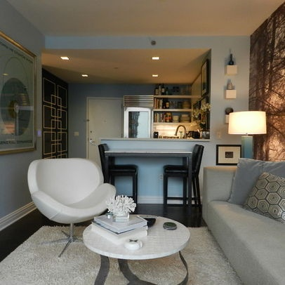 My Houzz: Bachelor's NYC Pad - contemporary - living room - new york - Frances Bailey