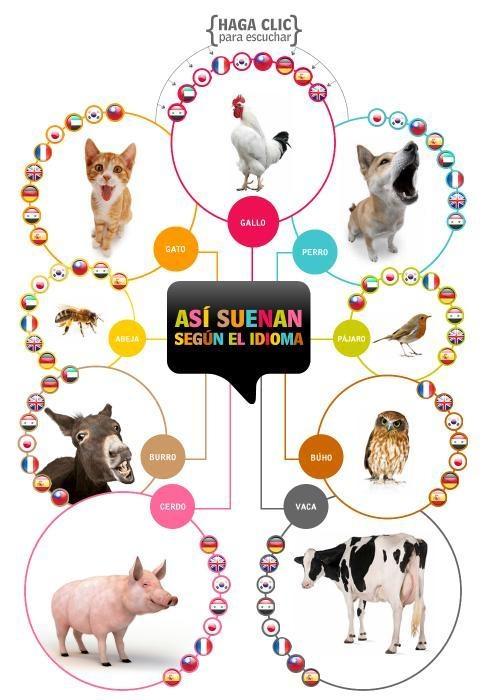 Voces de animales en diferentes idiomas. I died -- this is a legit topic in my Classroom.