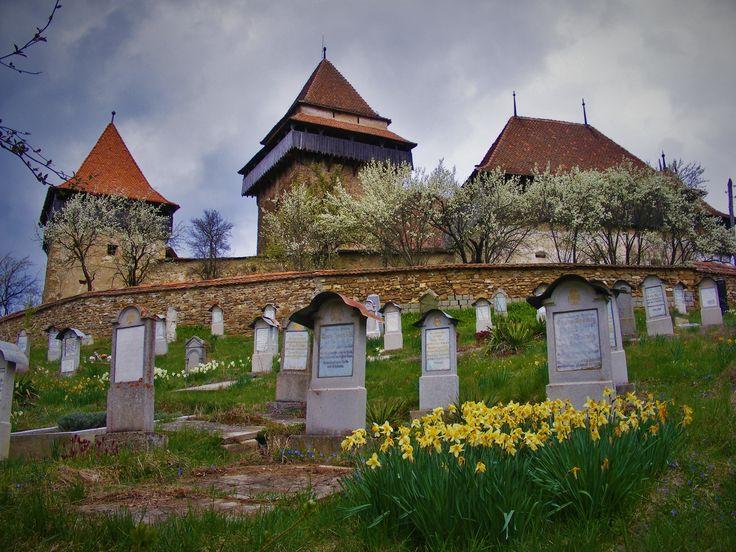 http://www.touringromania.com/tours/city-break/discover-transylvania-private-tour-4-days-brasov-sighisoara-sibiu.html