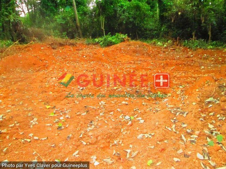 Guinee Forestiere: La Fosse Commune des victimes de l'affrontement communautaire Kpèlè- Konia du 15 au 18 Juillet 2013 à N'zérékoré