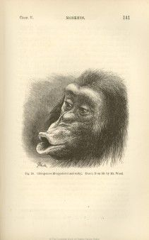 The complete work of Charles Darwin