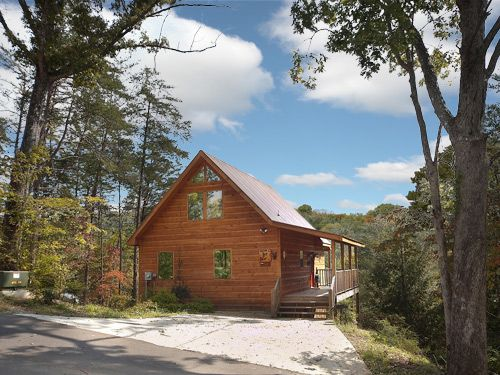 To Have And To Hold - You will enter this 1 bedroom cabin through a comfortable living and kitchen area complete with leather sleeper sofa... Click here to see and read more! http://www.cabinfevervacations.com/cabin-detail/?cid=492