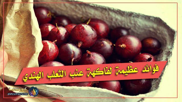 فوائد مذهلة لعنب الثعلب الهندي تجعلك لا تستغنى عنه Gooseberry Amla Fruit