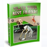With this #PLR product: Discover how to have a happy, obedient, well-behaved angel of a dog in just a few weeks. Here's the secret most dog trainers won't tell you (some of them don't even know it themselves) - successful dog training is not about getting your dog to understand you - it's about you understanding your dog.  Check out this #PLR product now