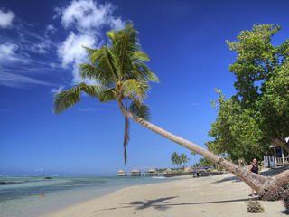 Kiribati New year's eve, Christmas Island is the 1st place to welcome the new year 2017 http://www.newyearsevelive.net/cities/samoa-kiribati.html #kiribati #ChristmasIsland