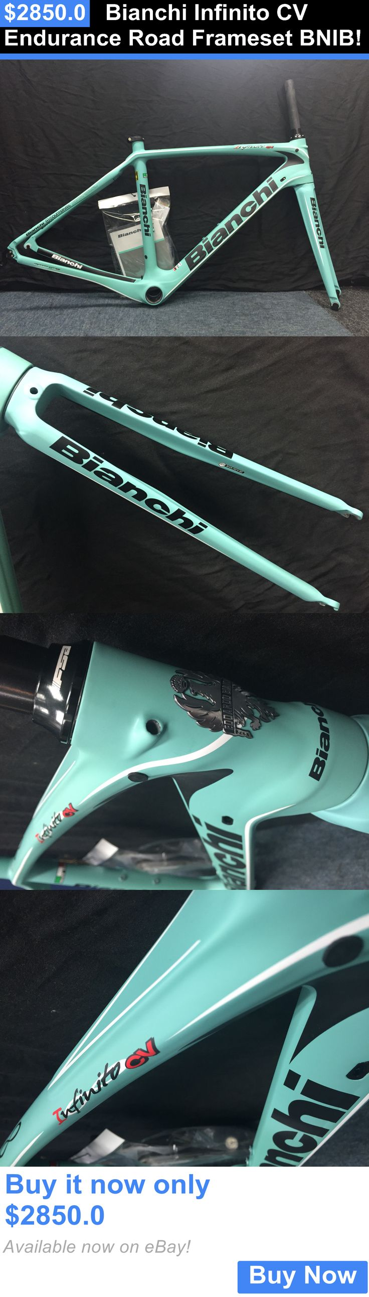 bicycle parts: Bianchi Infinito Cv Endurance Road Frameset Bnib! BUY IT NOW ONLY: $2850.0