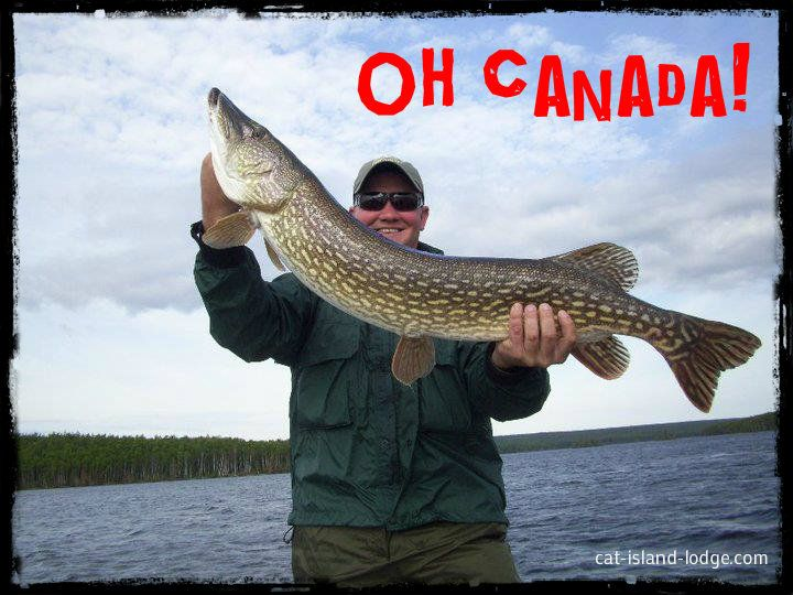 Trophy northern pike caught on a canadian fly in fishing for Ontario canada fishing trips
