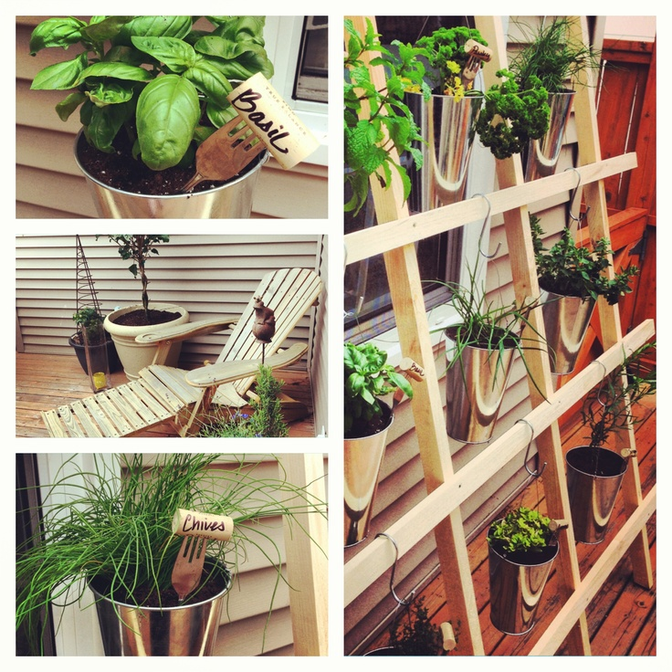 Vertical Herb Garden Ideas: Homemade Vertical Herb Garden!