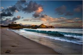 medlands beach - Great Barrier Island, Hauraki Gulf, New Zealand