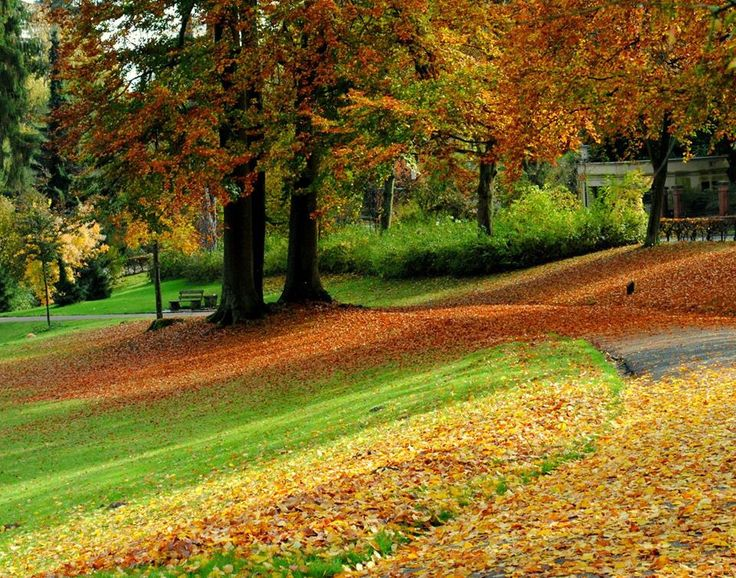 Bad Schwalbach Kurpark Fall-Herbst