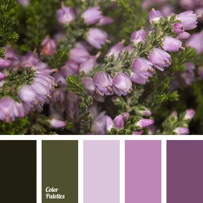 Color Palette #3014