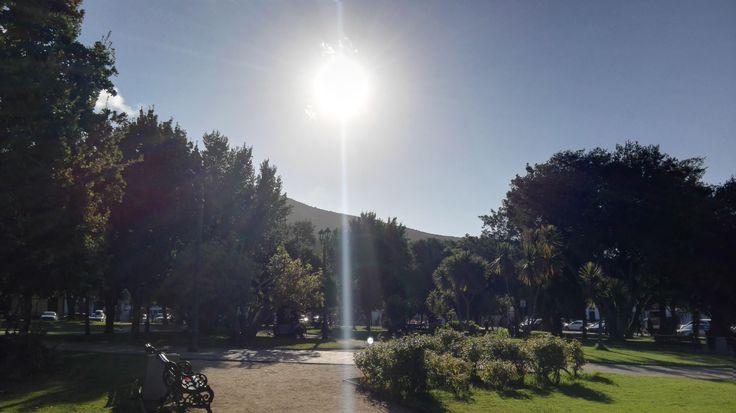 Un rayo de sol sobre la plaza, Papudo