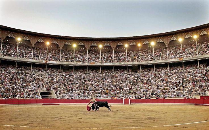 El PP ignora la prohibición a los toros en Canarias Euskadi o Galicia y centra su presión sólo en Catalunya