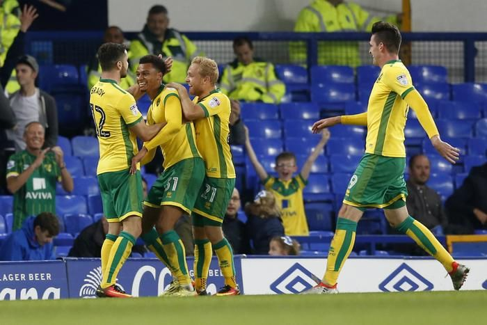 Norwich City soar to top of Championship table with 3 1 win | Sport | Newshub