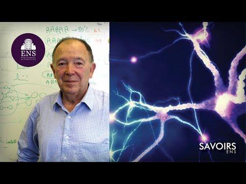 Jean-Pierre Changeux : L'Homme neuronal, trente ans après ? - YouTube