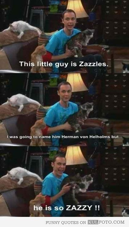 the big bang theory funny quotes | he-is-so-zazzy-funny-quotes-from-the-big-bang-theory-by-sheldon-this ...