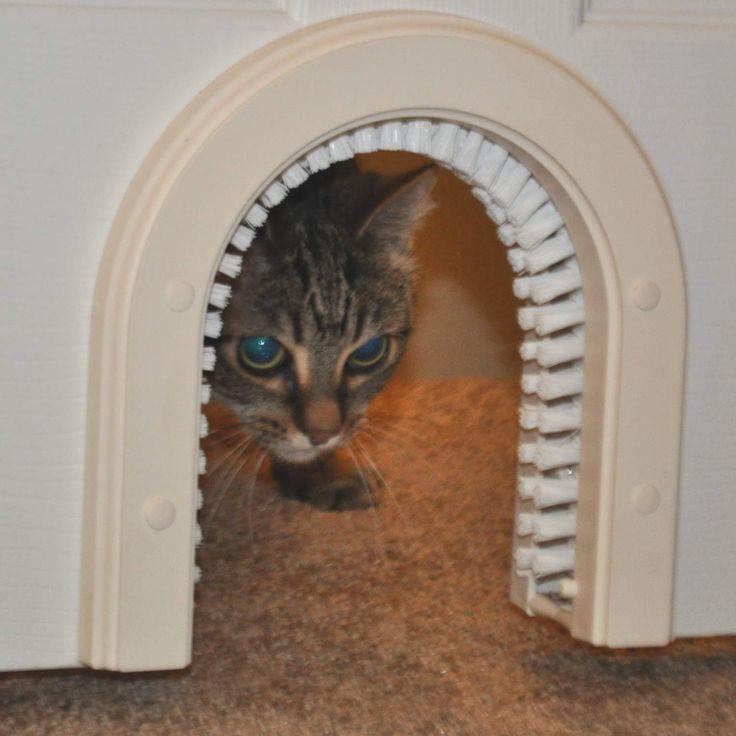 Cat Door Indoor Access Cat Door