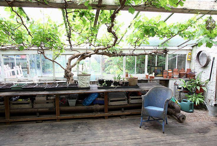 : Pools House, Gardens, Exten Maison, Rylett Crescents, Birthday Greenhouses, Design Branding, Green House, Crescents W12, Projet Exten