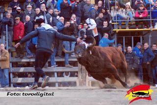 torodigital: Castellnovo 14/01/2017