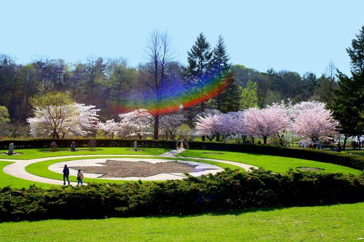 Beautiful floral garden in High Park, Toronto.