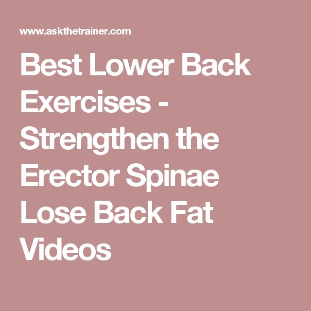 Best Lower Back Exercises - Strengthen the Erector Spinae Lose Back Fat Videos