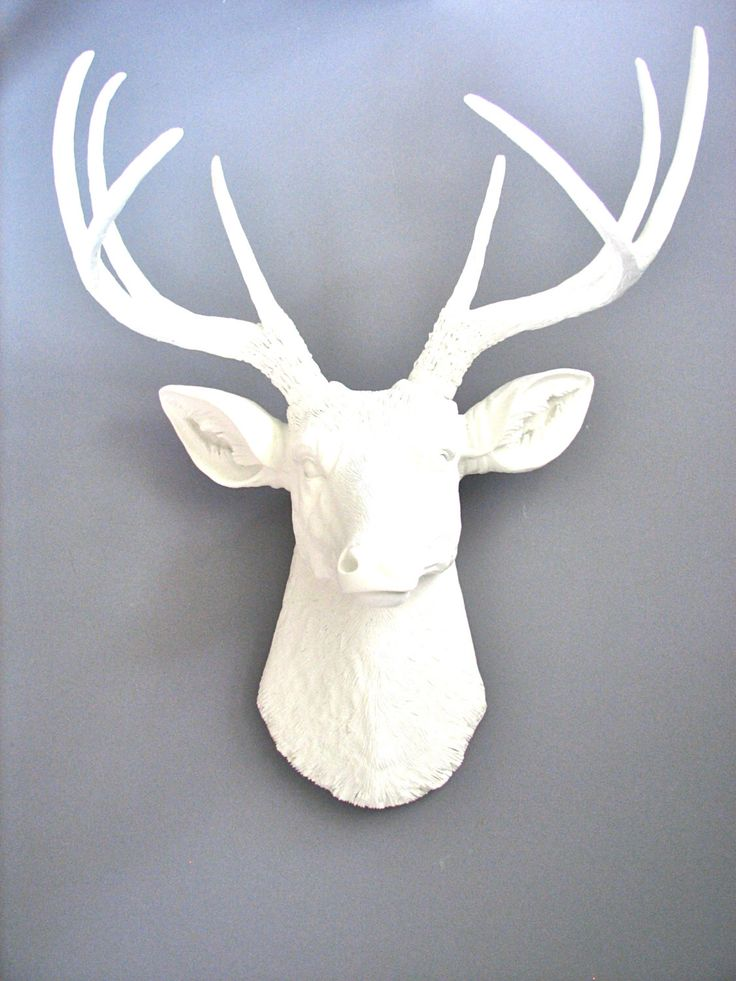 Animal Head Wall Decor White : Best ideas about white deer heads on faux