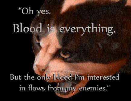 warrior cats quotes. Follow us.